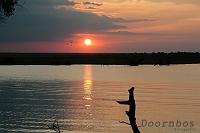 Chobe Botswana 02.jpg