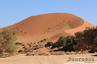 Sossusvlei zandduinen Namibie.jpg
