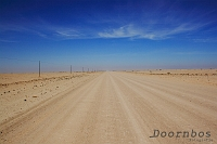 Woestijn Namibie.jpg